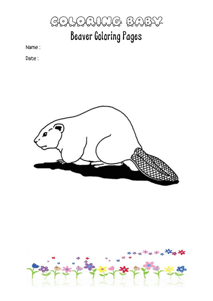 Beaver Coloring Pages